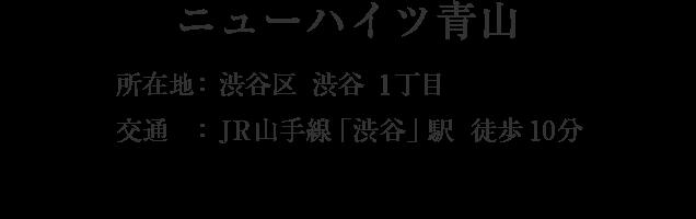 東京都渋谷区渋谷1丁目・「渋谷」駅 徒歩10分