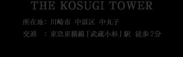 神奈川県川崎市中原区中丸子・「武蔵小杉」駅 分