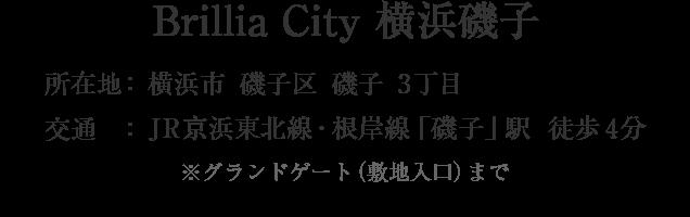 神奈川県横浜市磯子区磯子3丁目・「磯子」駅 分