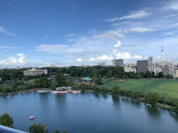 BrilliaTower上野池之端の画像8