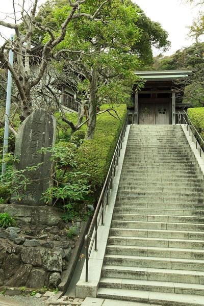 荏柄天神社まで徒歩2分(約100m)