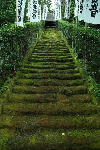 杉本寺まで徒歩6分(約470m)