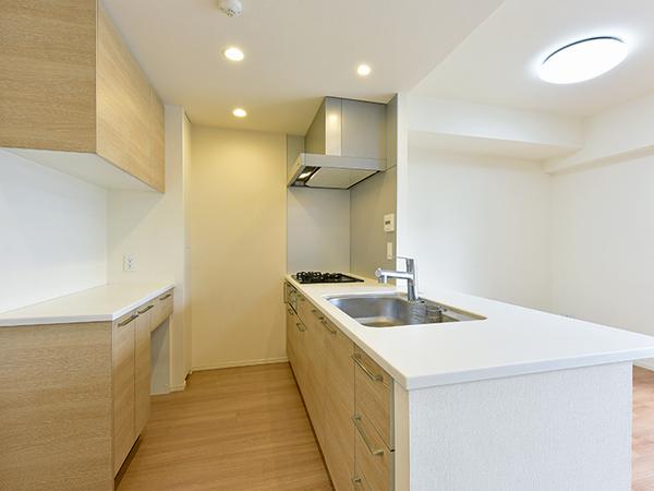 人造大理石が美しく耐久性に優れた天板、浄水器一体型シャワー水栓、食洗器など充実の設備・仕様!
