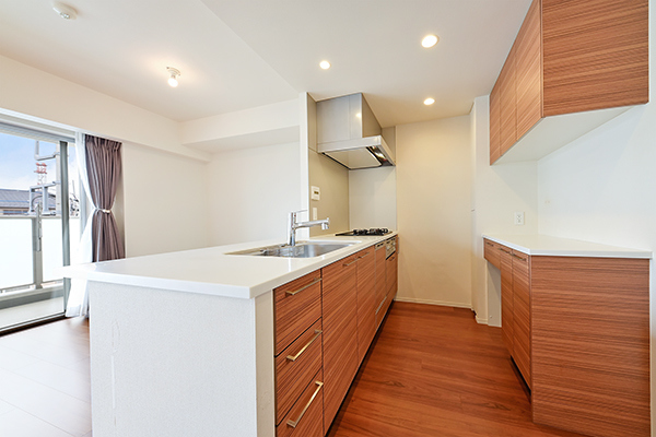 人造大理石が美しく耐久性に優れた天板、浄水器一体型シャワー水栓、食洗器など充実の設備・仕様