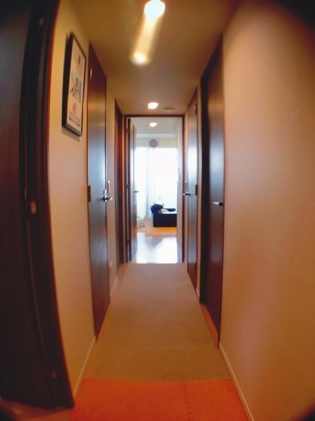 室内・廊下部分