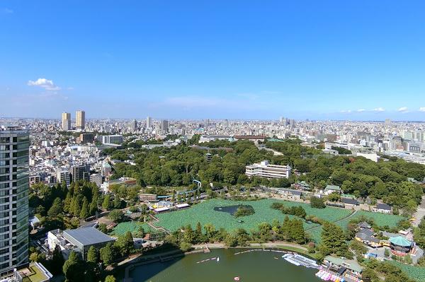 キッチン側バルコニーからは上野恩賜公園を眺望。四季折々の景色をご覧いただけます。