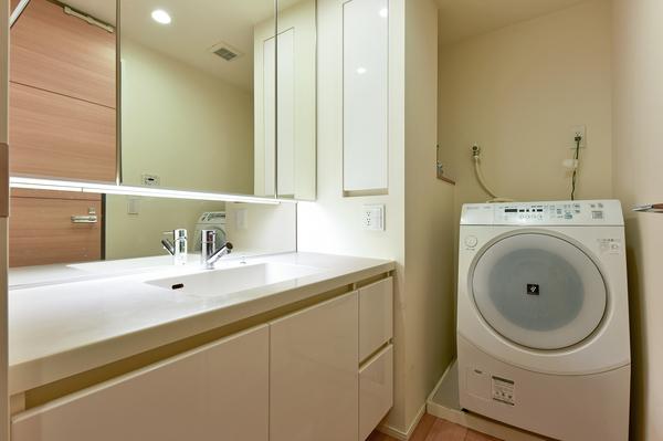 洗面室(三面鏡裏収納、洗面一体型ボウル、ノズル式水栓)