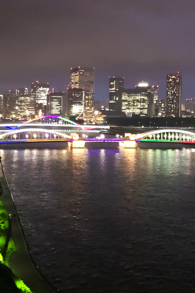 【眺望】リビングダイニングからの眺望。勝鬨橋・築地大橋はライトアップしており、綺麗です。