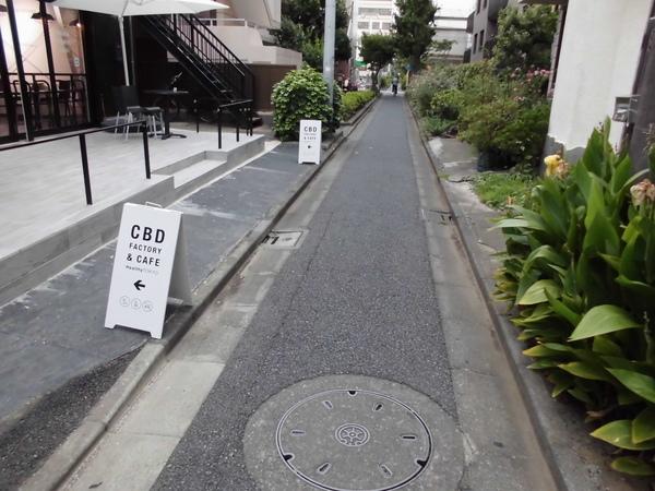 前面道路(認定:4.54m)