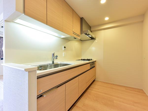 キッチン ワイドシンクで静音仕様 コンロは勿論、タイマー、炊飯機能付