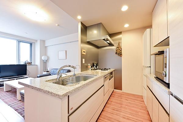 ディスポーザー、浄水器、天然石フラットカウンター、食器洗浄乾燥機、食器棚付き!