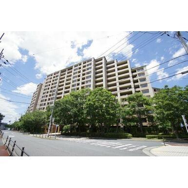 14階建、総戸数317戸の大規模マンション