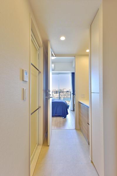 洗面室(ウォークスルータイプ)/背面収納付三面鏡/(廊下側引き戸からの写真)