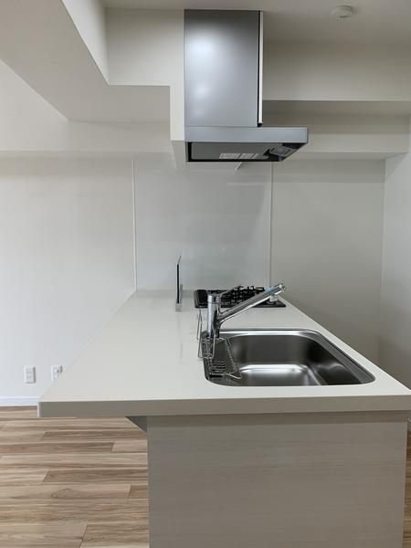 水栓金物の前に立ち上がりがなく、面一のキッチンカウンター。作業スペースが広く便利です