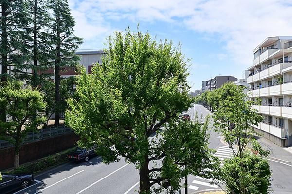 バルコニーからの眺望(南西側)