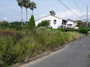 兵庫県洲本市小路谷