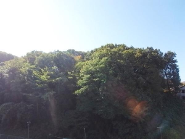 クリオ向ヶ丘遊園1番館
